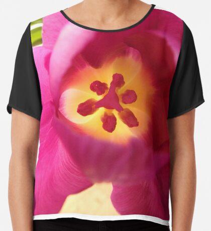 ein pinker Blütentraum, Tulpe, Tulpen Chiffontop