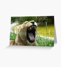 I'm So Tired... Greeting Card