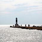 The Holland Pier by Brian Gaynor