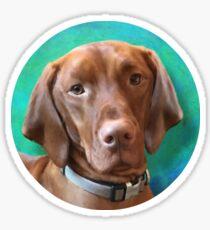 Vizsla Dog Portrait Sticker