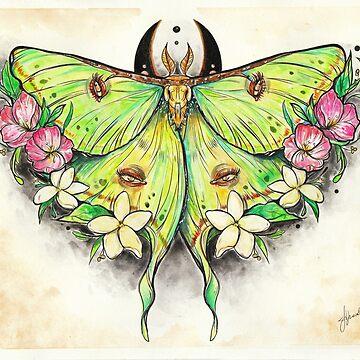 Lunar Moth by jjlockhART