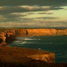 Port Campbell Coastline, Great Ocean Road by Joe Mortelliti