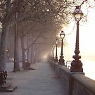 Winter morning on the Thames Embankment, London by PeteOfTas