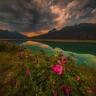 Medicine Lake - Canada by Greg Earl