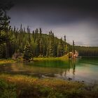 Maligne Lake - Canada by Greg Earl