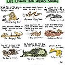 Life Lessons from Various Snakes by rohanchak