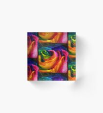 Rainbow Rose Acrylic Block