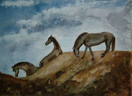 Mustang Morning by Shoshonan