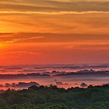 Pink Fog Morning 2 by LynyrdSky