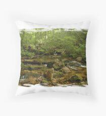 Maine Mountain Stream Throw Pillow