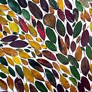 Leaves #5 by Helen Richards