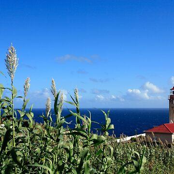 Ponta Garça lighthouse by gavila