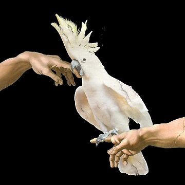 love hurts - cockatoo by FandomizedRose