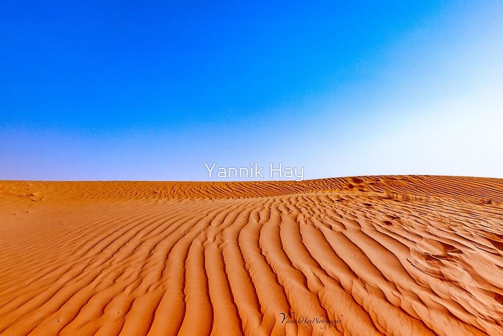 Arabian Adventure - Dubai by Yannik Hay