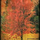 When It's 100 degrees...Remember Autumn! by Rene Crystal
