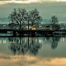 Isle Rousseau Geneva by David Freeman