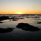 Sunset, Waves, Flotsam & Jetsam by Tim&Paria Sauls