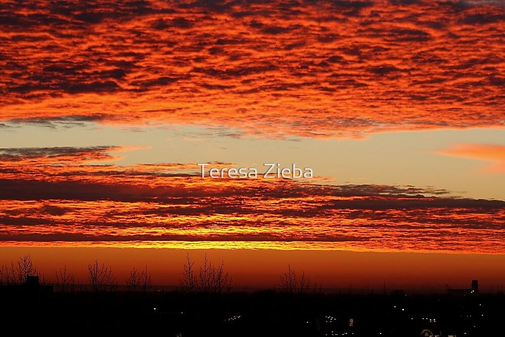The Glory of Sunrise by Teresa Zieba