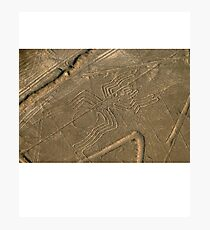 UFOs Aliens Crop Circle Photographic Print