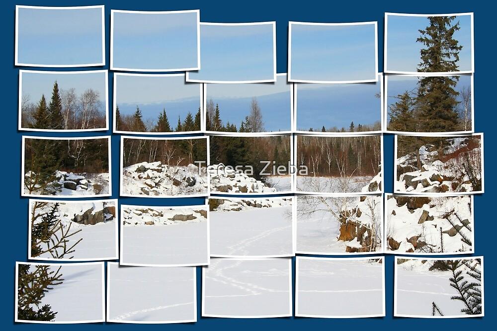 Winter Scene Divided by Teresa Zieba