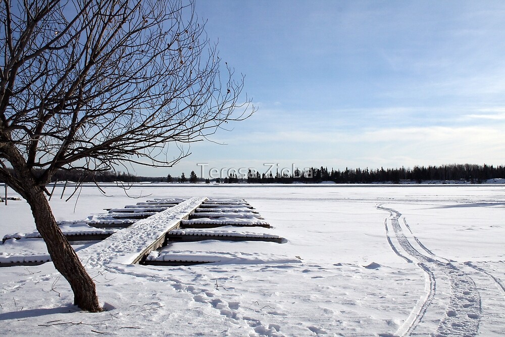Winter Marina by Teresa Zieba