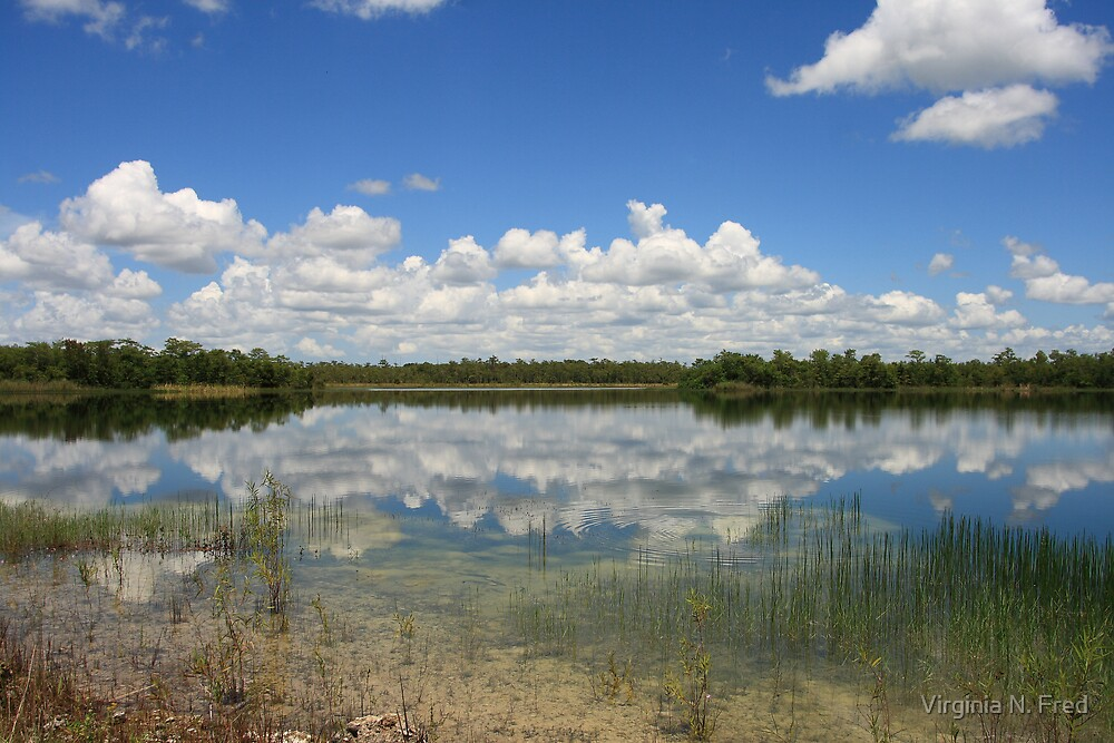 Cloud Reflections by Virginia N. Fred