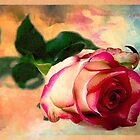 Sometimes You Just Need A Rose by Rene Crystal