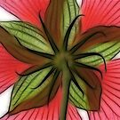 Hibiscus Star by Artlife