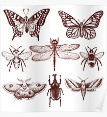 Red Insect Series in pointillism Poster
