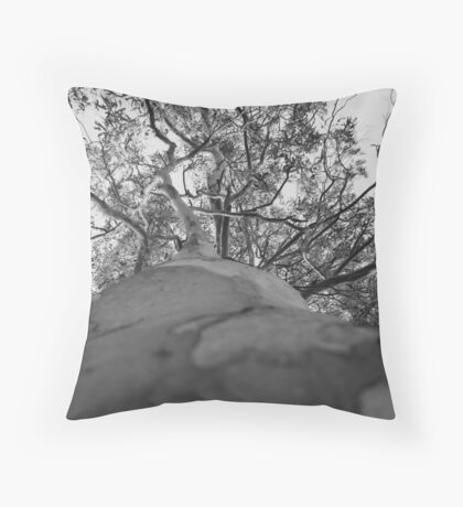 Grey Old Gum Tree Throw Pillow