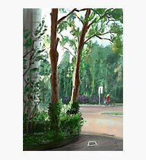 Summer Afternoon Photographic Print
