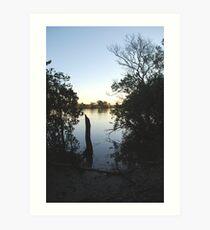 Manning Mangrove Art Print