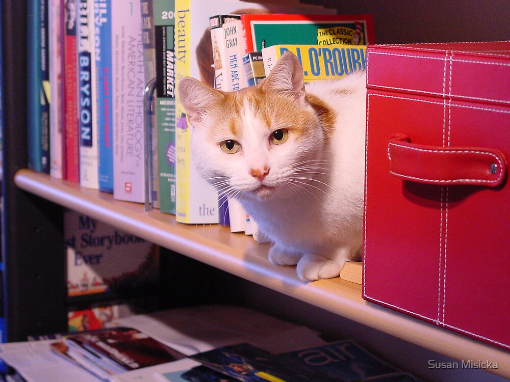 Bookworm kitty by Susan Misicka