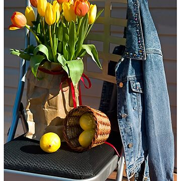 Tulips in a Lunch Bag by valentina9