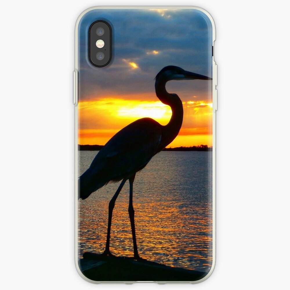 Dusky Heron iPhone Case & Cover
