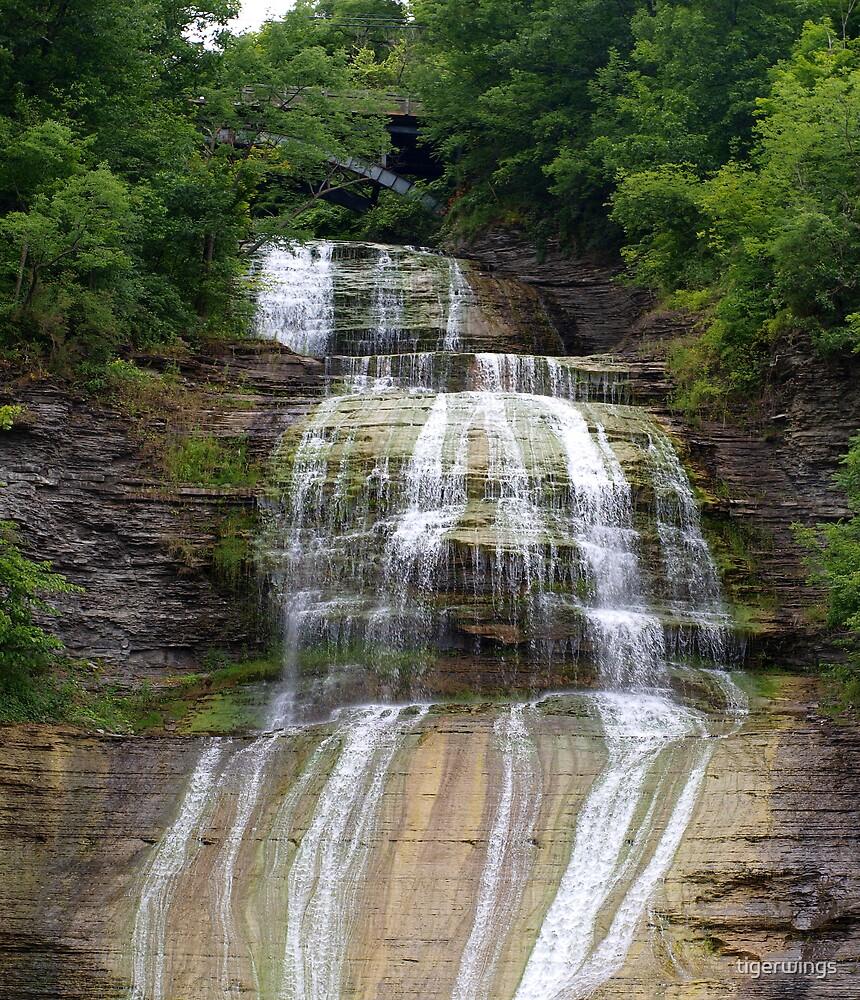 She-Qua-Ga Falls- Mountour Falls NY by tigerwings