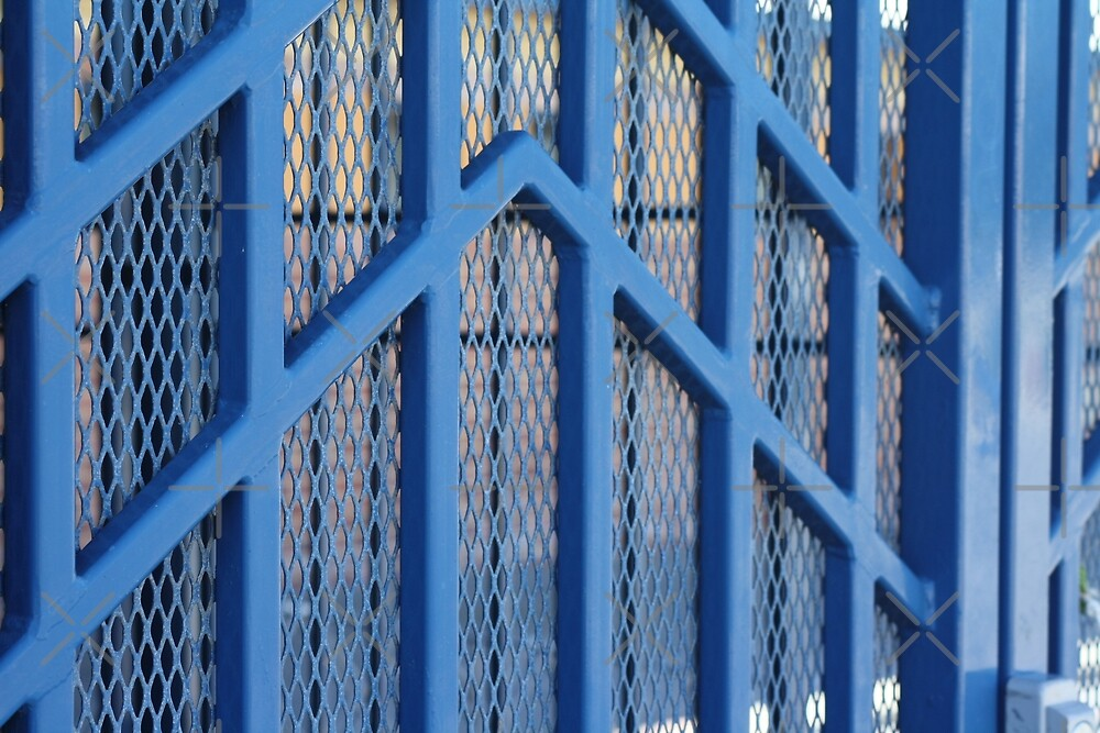 The Blue Gate by TeAnne