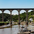 Calstock Viaduct by widdy170