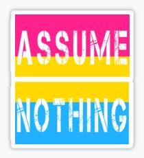 Pansexual Pride Flag Assume Nothing Pan Awareness Sticker