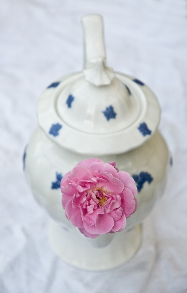 The Rose and the Teapot by Ilva Beretta