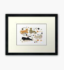 Cat Lounge Framed Print