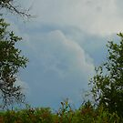 Storm Clouds Overhead by MaeBelle