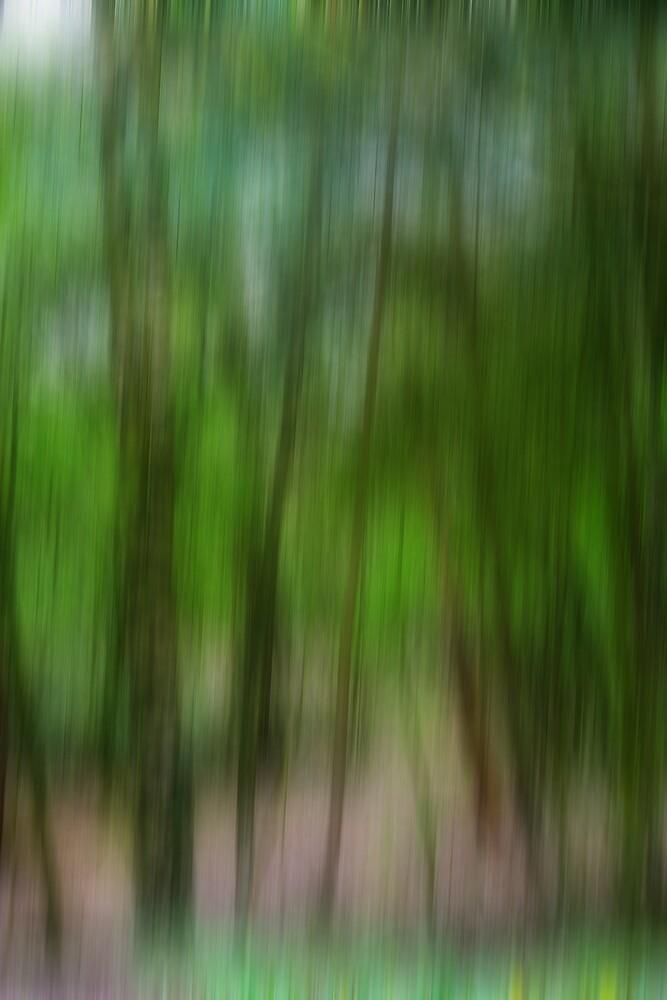 Woodland Uprising by Mike Freedman