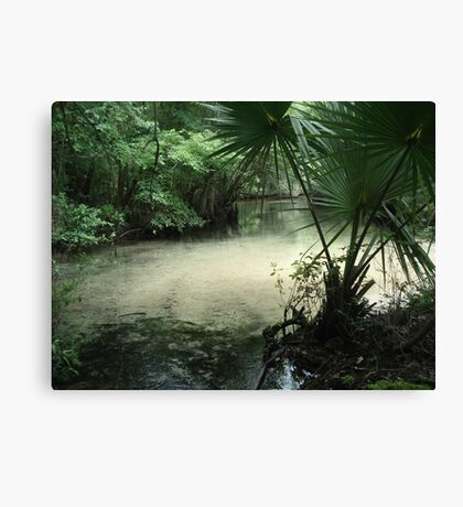 Outflow from the Beaverdam Canvas Print