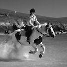 da waterhorse by NordicBlackbird