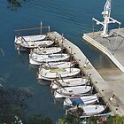 Catalan fishing boats. by Paul Pasco