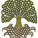 Celtic Yggdrasil - Tree of Life by Carrie Dennison