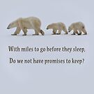 Promises to keep by Owed To Nature