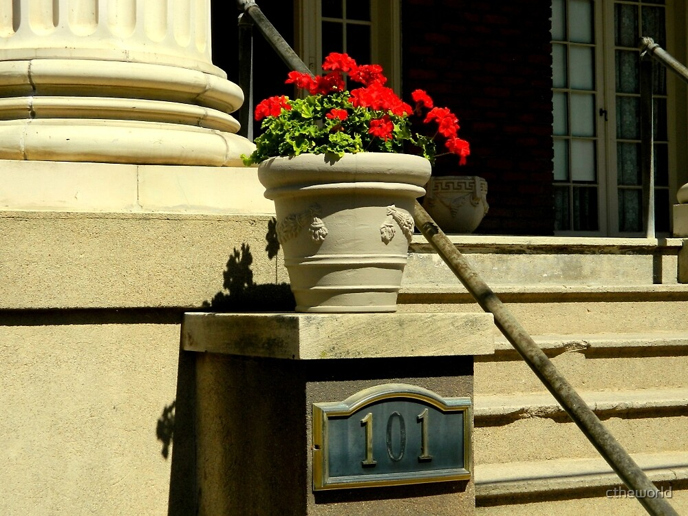 A City Stoop (#101)   ^ by ctheworld