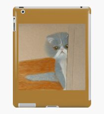 Precious Peeking from Behind a Door iPad Case/Skin